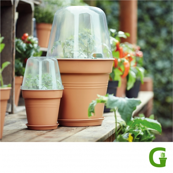elho Green Basics Anzuchttopf rund komplett mit transparenter Haube und Untersetzer