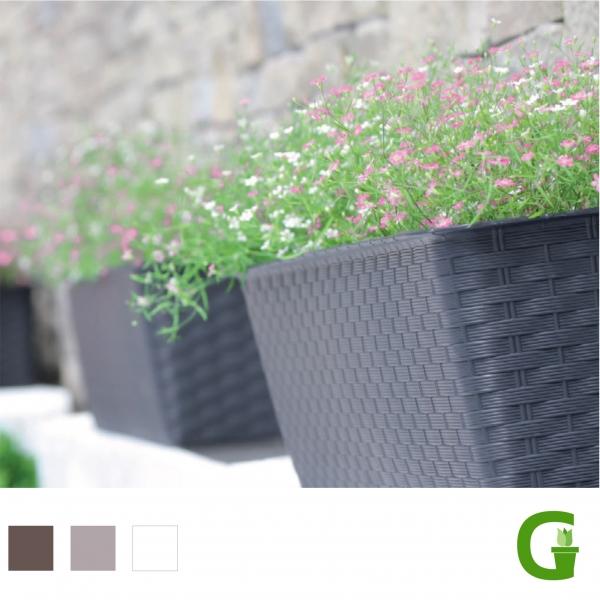 Rattan Blumenkasten Balkonkasten mit Untersetzer 40 cm | 50 cm | 60 cm