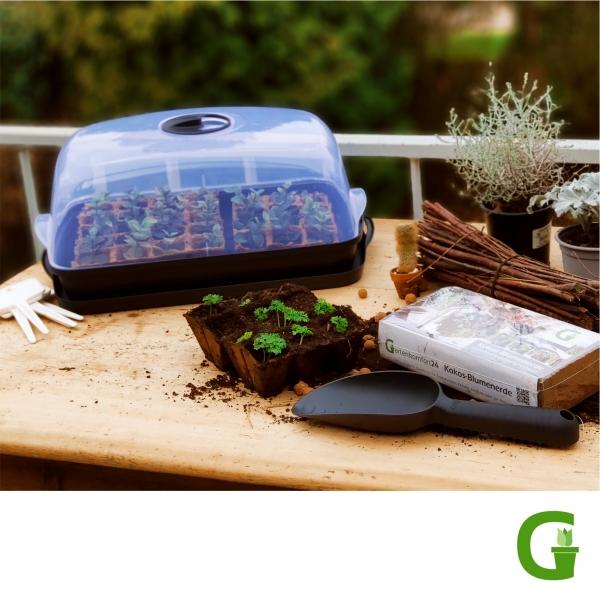 Up & Green Basic Anzucht-Set S / M / L inkl. Anzuchterde und Anzuchttöpfen