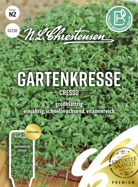 Gartenkresse Cresso