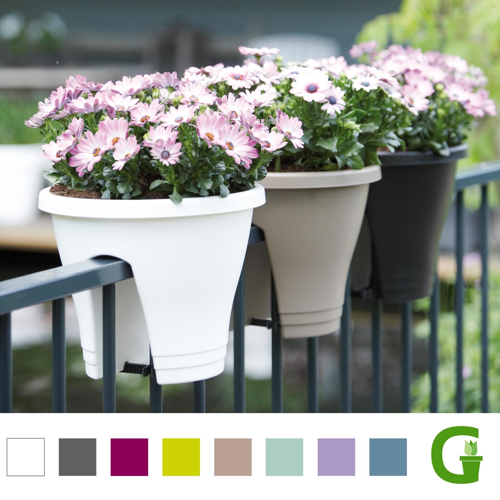 elho corsica flower bridge 30 cm balkon pflanzgef e. Black Bedroom Furniture Sets. Home Design Ideas