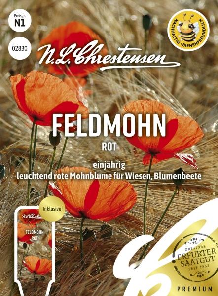 Feldmohn Rot